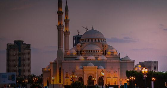 UAE Snapshot